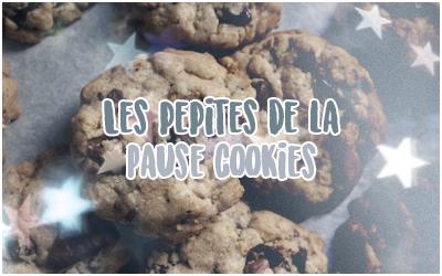 http://journal-serdaigle.poudlard12.com/public/2020/Janvier/Les_pepites_de_la_Pause_cookies.png